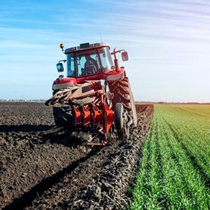 Du học Ireland ngành nông nghiệp