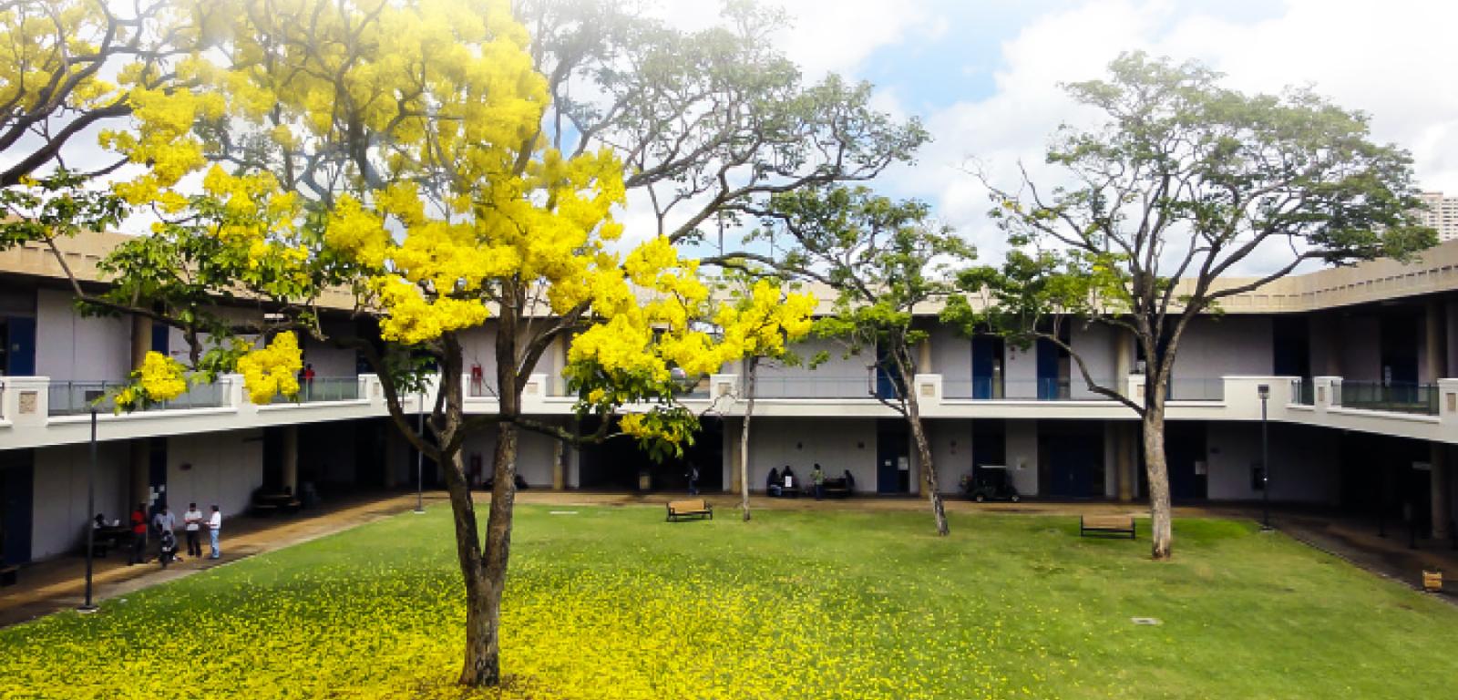 School image 0